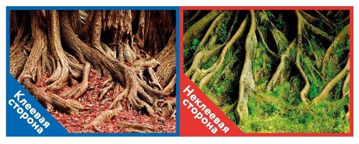 Пленочный фон Prime Корни с листьями/Корни с мохом двухсторонний