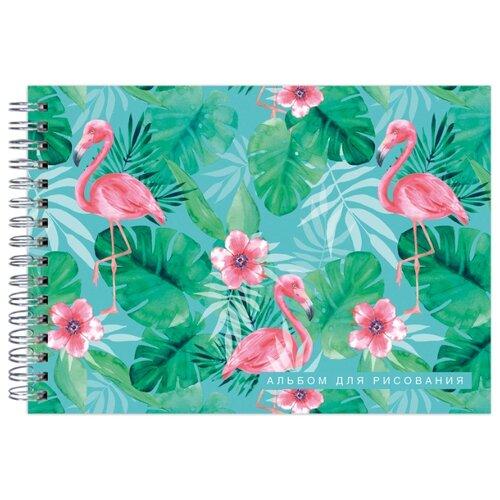 Купить Альбом для рисования ЭКСМО Фламинго 29.7 х 21 см (A4), 160 г/м², 20 л., Альбомы для рисования
