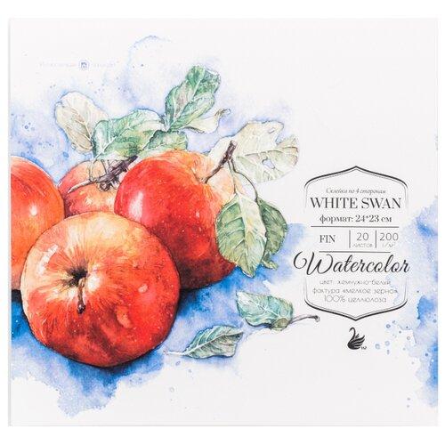 Купить Альбом для акварели Малевичъ White Swan Fin 24 х 23 см, 200 г/м², 20 л., Альбомы для рисования