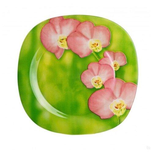 Luminarc Тарелка обеденная Erine 25х25 см зеленый / розовый