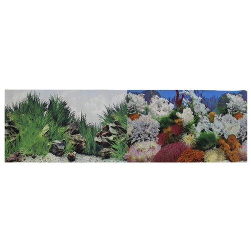 Пленочный фон Prime Морской пейзаж/Подводный рельеф двухсторонний 60х150 см