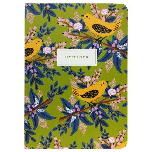Купить Подписные издания Тетрадь Birds, клетка, 36 л. зеленый/голубой, Тетради