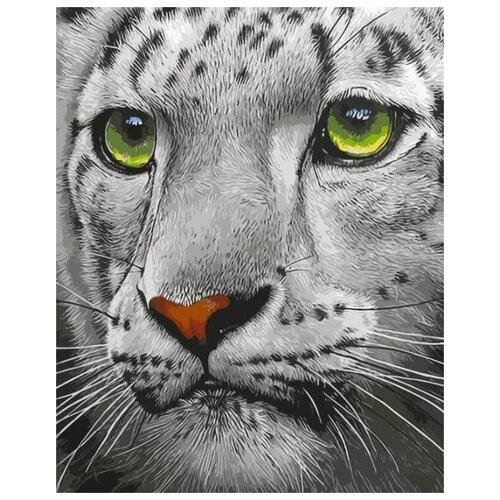 Фото - Картина по номерам Белый тигр, 30x40 см цветной картина по номерам белый тигр 30х40 см me1072