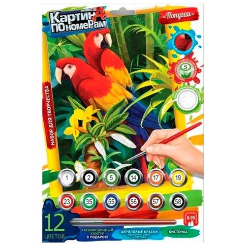 Фото - Danko Toys Картина по номерам Попугаи 21х29,7 см (KN-03-02) danko toys раскраска по номерам pencil by numbers девочка
