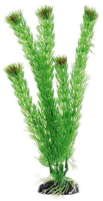 Искусственное растение BARBUS Амбулия 30 см