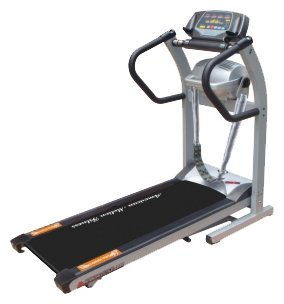 American Motion Fitness 8221S