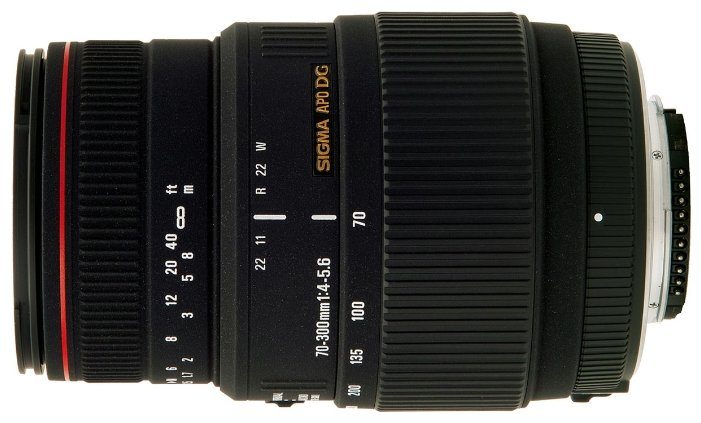 Sigma AF 70-300mm f/4-5.6 APO Macro DG Nikon F