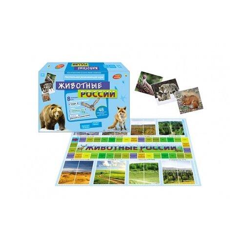 Купить Настольная игра Рыжий кот Животные России И-0028, Настольные игры