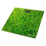 Весы Home Element HE-SC906 Grass