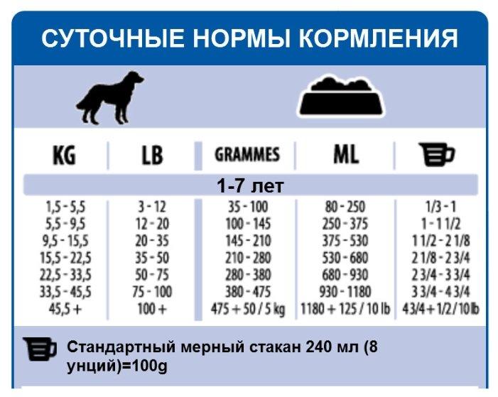 Суточная норма корма для собак мелких пород