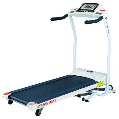 American Motion Fitness ACO-L