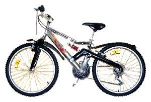 Подростковый горный (MTB) велосипед REGGY RG24B3200