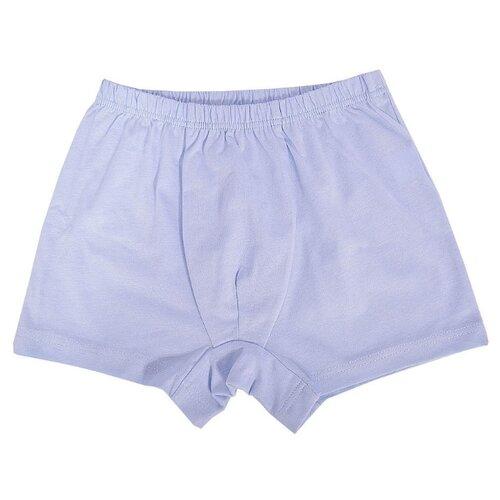 Купить Трусы Купалинка размер 68, голубой, Белье и пляжная мода