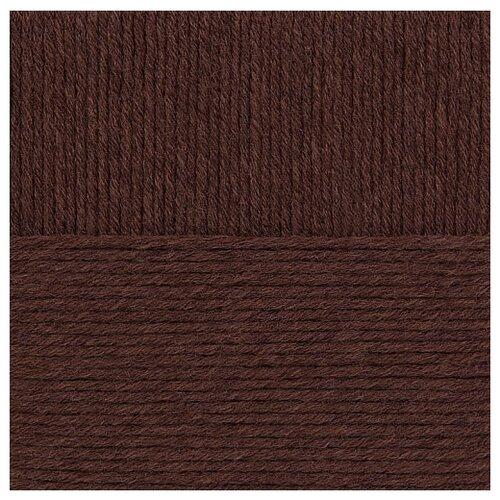 Пряжа для вязания ПЕХ Зимняя премьера (50% мериносовая шерсть, 50% акрил) 10х100г/150м цв.017 шоколад