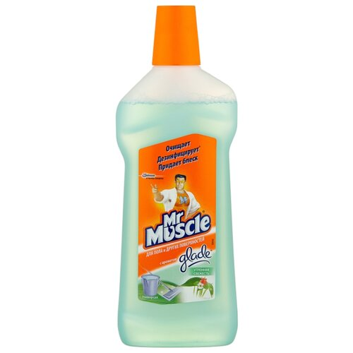 Mr. Muscle Универсальное моющее средство Утренняя свежесть 0.5 л средство моющее mr glatt daily универсальное 5 л