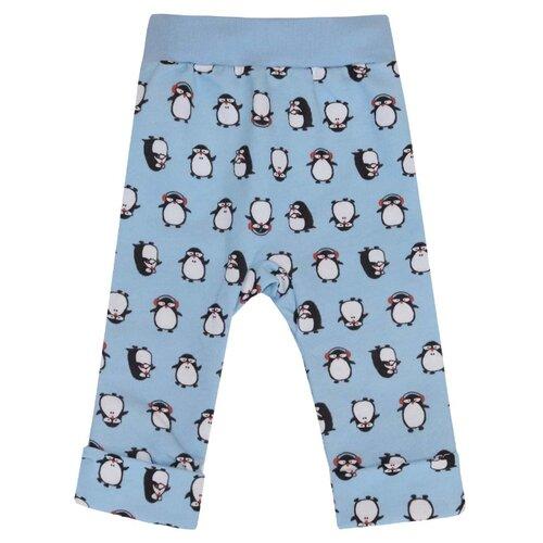 Купить Брюки KotMarKot Милые пингвины 75110 размер 62, голубой, Брюки и шорты