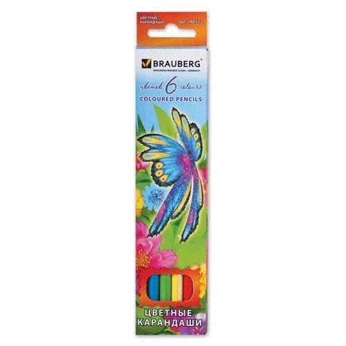 Купить BRAUBERG Карандаши цветные Wonderful butterfly, 6 цветов с блестками (180522), Цветные карандаши