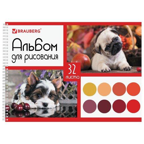 Альбом для рисования BRAUBERG Собачки 29.7 х 21 см (A4), 100 г/м², 32 л. альбом для рисования brauberg собачки 29 7 х 21 см a4 100 г м² 32 л
