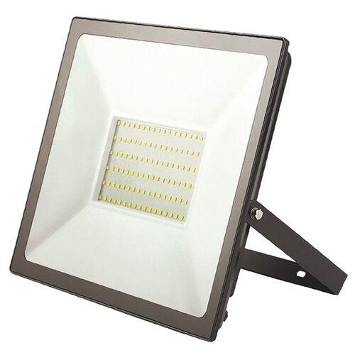 Прожектор светодиодный REXANT 100 Вт IP65 8000 лм 6500 K холодный свет
