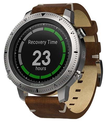 Garmin Fenix Chronos (leather)
