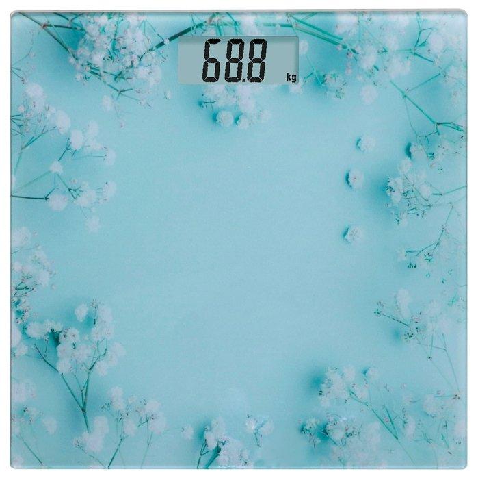 Весы Orion ВБН-ЭСП01-150КГ