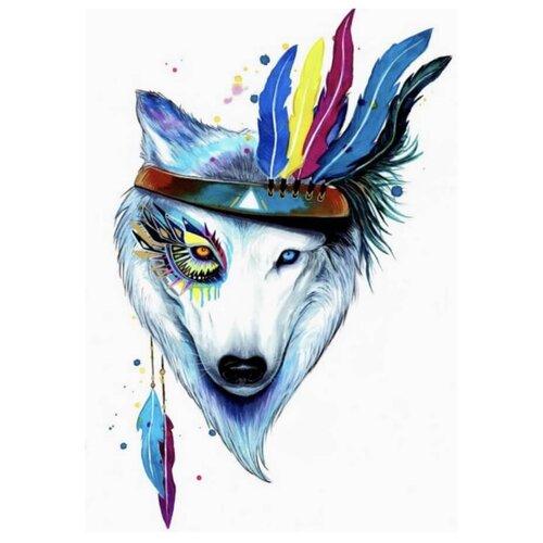 Цветной Набор алмазной вышивки Собака-индеец (LGP003) 40х50 смАлмазная вышивка<br>