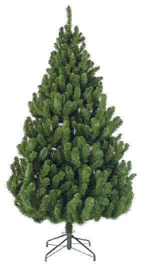 Triumph Tree Ель Вирджиния 1.55
