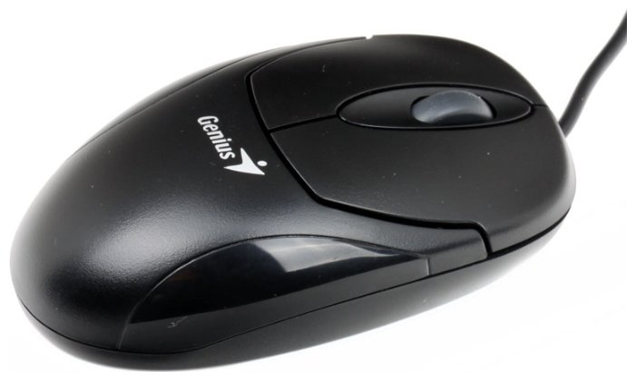 Мышь Genius XScroll Optical Black USB