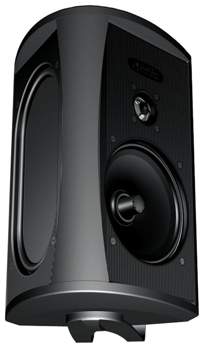 Definitive Technology AW 6500 Black