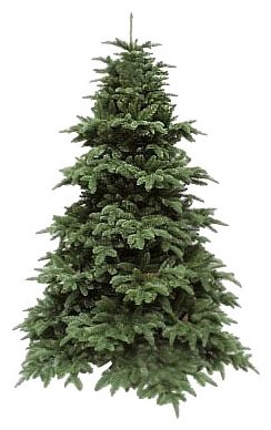 Triumph Tree Ель Нормандия темно-зеленая 2.15