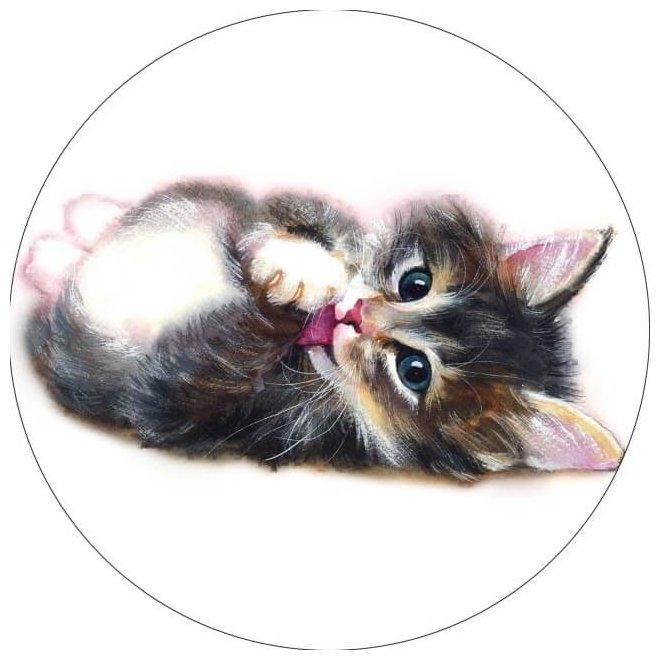 Цветной Вышивка крестом Милый котенок 21 х 21 см (VC008)