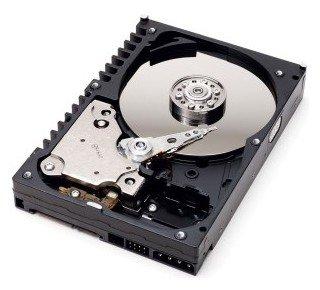 Western Digital WD Blue 80 GB (WD800JD)