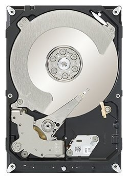 Seagate ST1000DX001