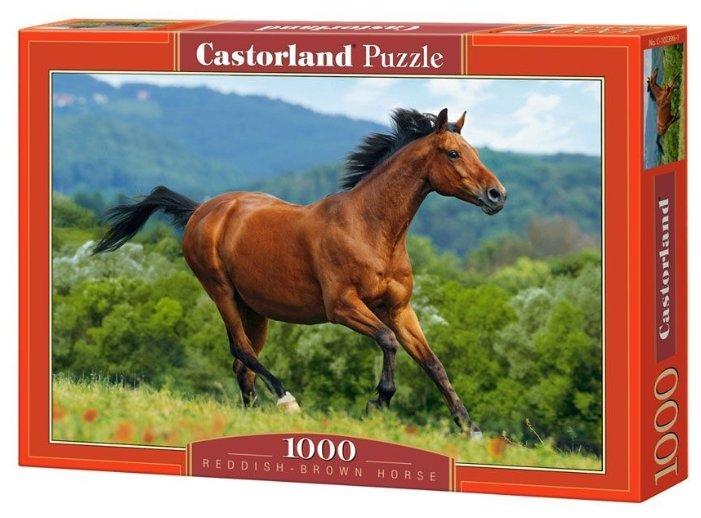 Пазл Castorland Reddish-Brown Horse (C-102396) 1000 шт.