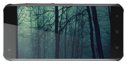 Black Fox Смартфон Black Fox B3Fox+