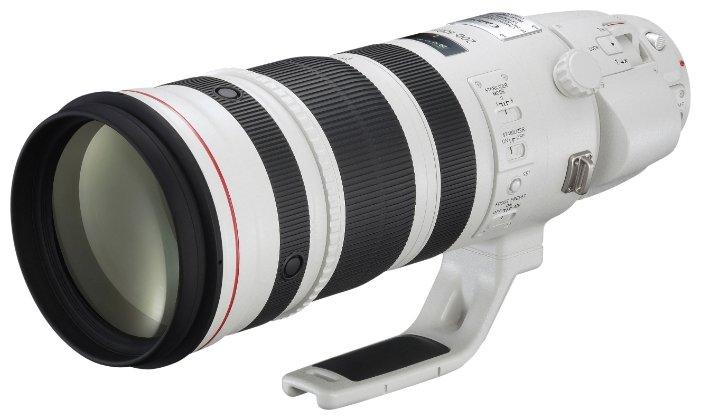 Объектив Canon EF 200-400mm f/4L IS USM Extender 1.4X — купить по выгодной цене на Яндекс.Маркете