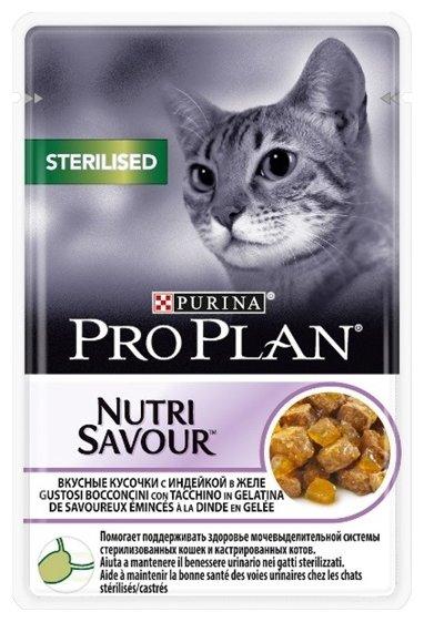 Лакомство для кошек Happy Cat Подушечки Кошачья мята, 50г