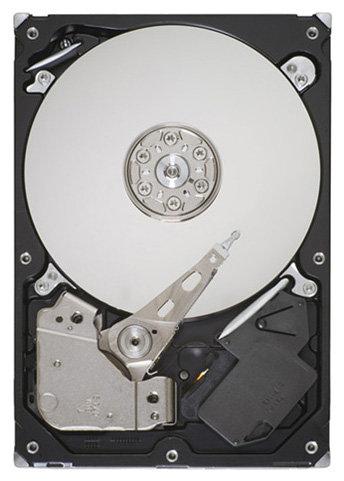 Жесткий диск Seagate ST500DM002