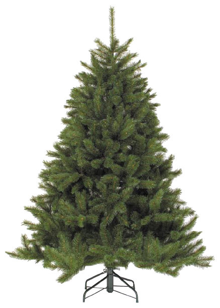 Triumph Tree Ель Лесная Красавица