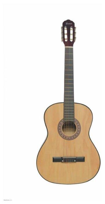 Классическая гитара terris tc-3901a na