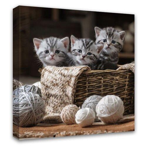 Картина Симфония Милые котята 30х30 см