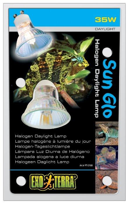 Декорация для аквариума Meijing Aquarium Морская раковина с кораллами, AD017-P, фиолетовый, 13,5 х 13,5 х 13,5 см