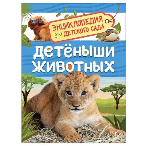 Клюшник Л. Энциклопедия для детского сада. Детеныши животных