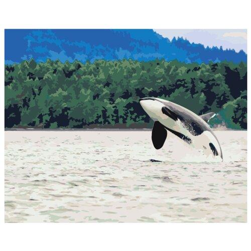 Купить Живопись по номерам Картина по номерам Z68501 40x50 см, Картины по номерам и контурам