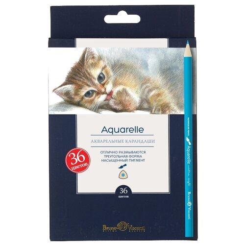 Купить Bruno Visconti акварельные карандаши Aquarelle 36 шт (30-0049), Цветные карандаши