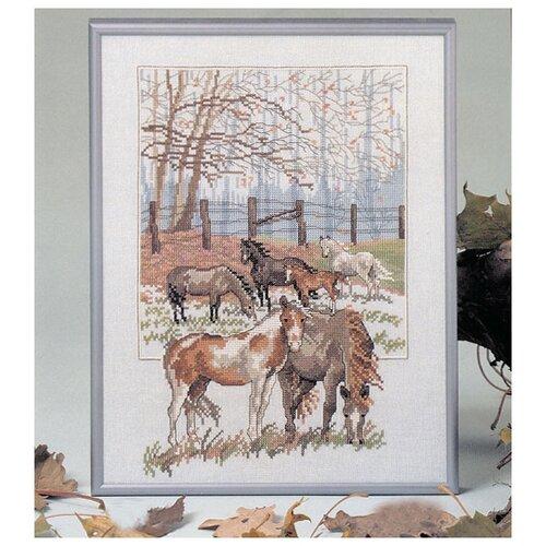 Купить Набор для вышивания Лошадь 27 x 35 см 73-84210, Oehlenschlager, Наборы для вышивания