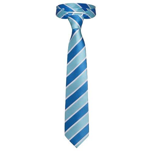 Галстук Signature Мистер Блисс (209313) светло-голубой/темно-голубой/белый