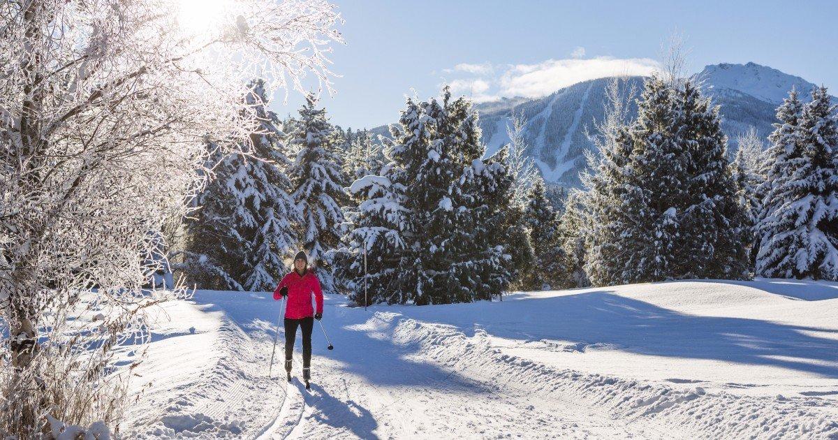 Выбираем беговые лыжи — советы на Яндекс.Маркете af9ee1279a1