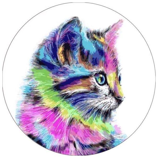 Цветной Вышивка крестом Разноцветная кошка 21 х 21 см (VC006)