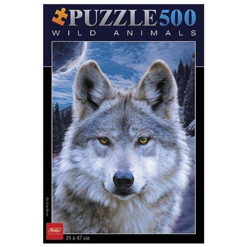 Купить Пазл Hatber Wild animals Волк (500ПЗ2_08264), 500 дет., Пазлы